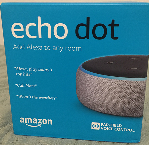 auction: Echo dot Alexa